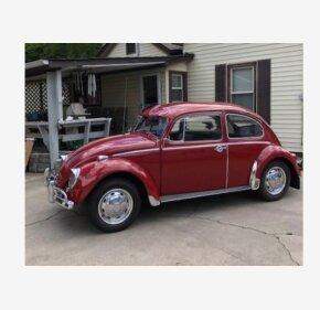 1966 Volkswagen Beetle for sale 101239795