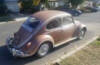 1966 Volkswagen Beetle for sale 101247845
