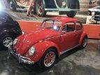 1966 Volkswagen Beetle for sale 101404089