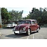 1966 Volkswagen Beetle for sale 101544396