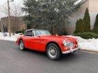 1967 Austin-Healey 3000MKIII for sale 101457491