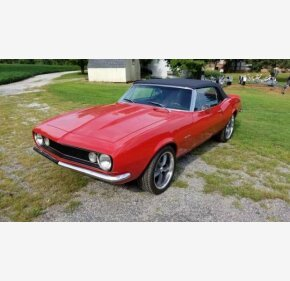 1967 Chevrolet Camaro Convertible for sale 101028342