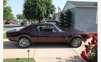 1967 Chevrolet Camaro Z/28 Coupe for sale 101521643