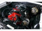 1967 Chevrolet Chevelle SS for sale 101551204