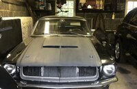 1967 Ford Mustang Coupe for sale 101384318