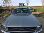1967 Ford Mustang for sale 101541719
