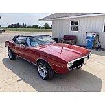 1967 Pontiac Firebird Convertible for sale 101598861
