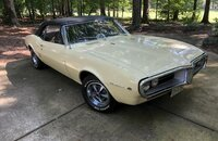 1967 Pontiac Firebird Convertible for sale 101225587