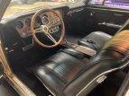 1967 Pontiac GTO for sale 101508797