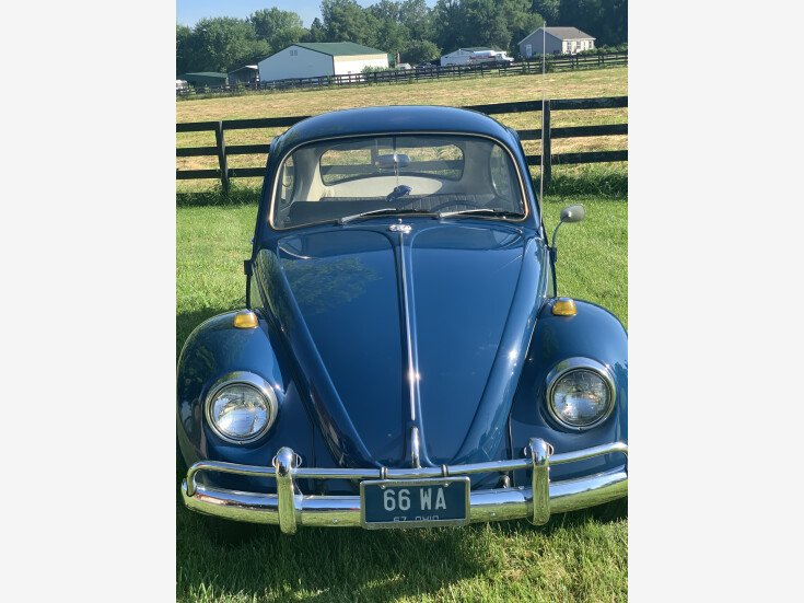 1967 Volkswagen Beetle Coupe for sale 101555516