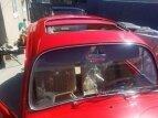1967 Volkswagen Beetle for sale 101585042
