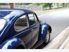 1967 Volkswagen Beetle for sale 101611040