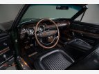 1968 Shelby GT500 for sale 101543844