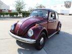 1968 Volkswagen Beetle for sale 101549007