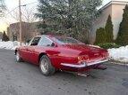 1969 Ferrari 365 for sale 101452200