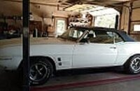 1969 Pontiac Firebird Convertible for sale 101339483