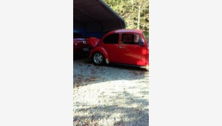 1969 Volkswagen Beetle for sale 100928389