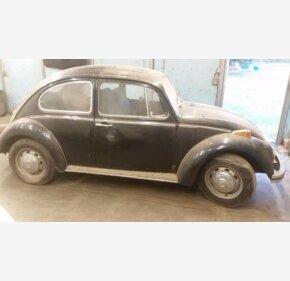 1969 Volkswagen Beetle for sale 100930043