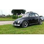 1969 Volkswagen Beetle for sale 101537522