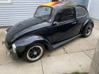 1969 Volkswagen Beetle Coupe for sale 101605200