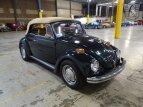 1970 Volkswagen Beetle Convertible for sale 101479301