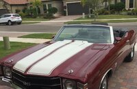 1971 Chevrolet Chevelle SS for sale 101225317