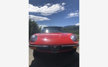 1972 Alfa Romeo Spider Quadrifoglio for sale 101330299