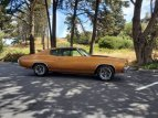 1972 Chevrolet Chevelle SS for sale 101586024