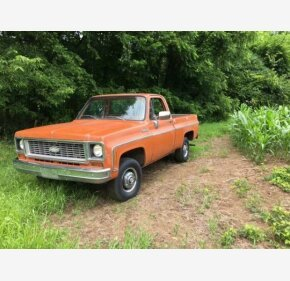 1973 chevy c10 long bed