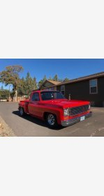 1973 Chevrolet C/K Truck for sale 101055530