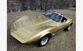 1973 Chevrolet Corvette for sale 101110066