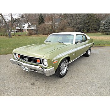 1973 Chevrolet Nova for sale 101446011