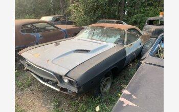 1973 Dodge Challenger for sale 101607970