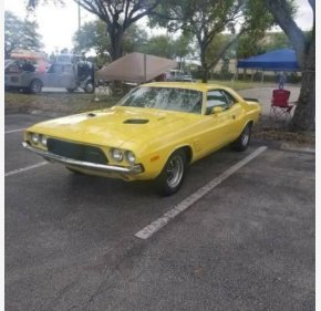 1973 Dodge Challenger for sale 101335219