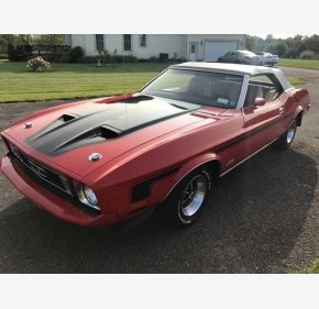 1973 Ford Mustang for sale 101042396