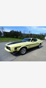 1973 Ford Mustang for sale 101310049