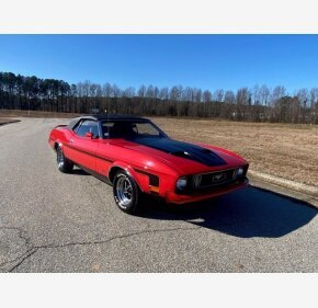 1973 Ford Mustang for sale 101437358
