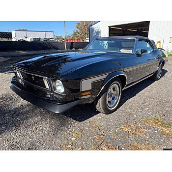 1973 Ford Mustang for sale 101437477