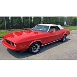 1973 Ford Mustang Convertible for sale 101543901