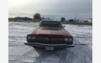 1973 Oldsmobile Ninety-Eight Regency for sale 101237236