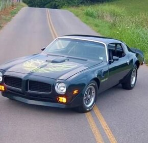 1973 Pontiac Firebird for sale 101373108