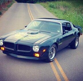 1973 Pontiac Firebird for sale 101420022