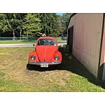 1973 Volkswagen Beetle Coupe for sale 101331132