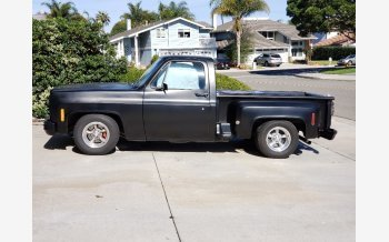 1974 Chevrolet C/K Truck 2WD Regular Cab 1500 for sale 101222803