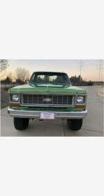 1974 Chevrolet C/K Truck for sale 101069445