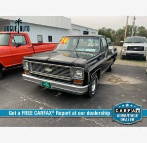 1974 Chevrolet C/K Truck for sale 101146277