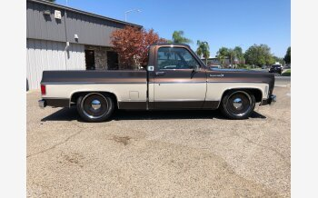 1974 Chevrolet C/K Truck for sale 101358250