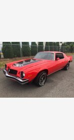 1974 Chevrolet Camaro Z28 for sale 101341949