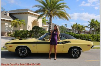 1974 Dodge Challenger for sale 101313886