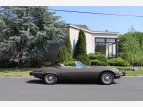 1974 Jaguar XK-E for sale 101530443